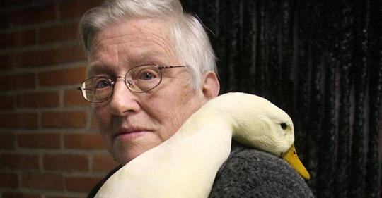 Vogelvrouw gaat met pensioen